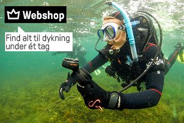 Kingfish - alt til dykning under ét tag