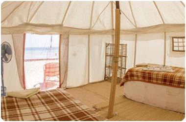 Tent - Beduin telt i Shagra