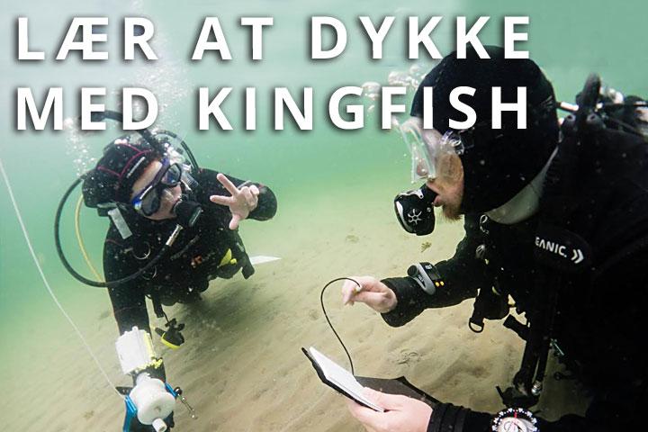 Lær at dykke med Kingfish