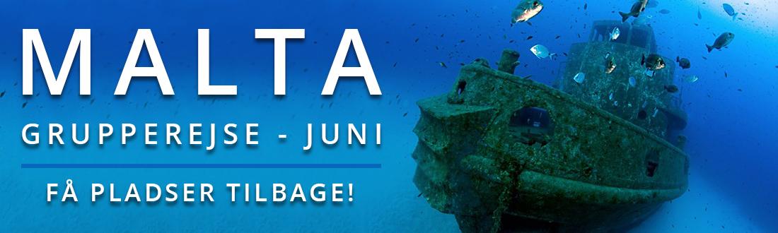 malta-grupperejse-juni-2017